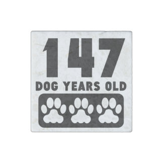 147 Dog Years Old Stone Magnet
