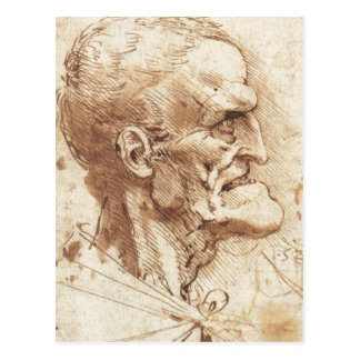 1487 1490 ) is a drawing by Leonardo da Vinci Sour Postcard