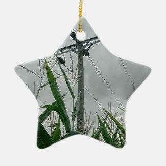 14.jpg christmas ornament