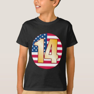 14 USA Gold T-Shirt