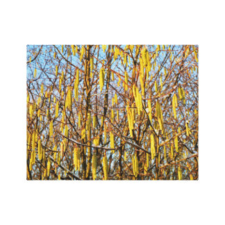 """14"""" x 11"""" Canvas featuring beautiful Hazel Tree Stretched Canvas Prints"""