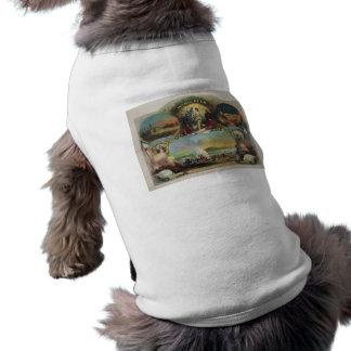14th Regiment N.Y.S.M. Civil War Engagements Pet Tee Shirt