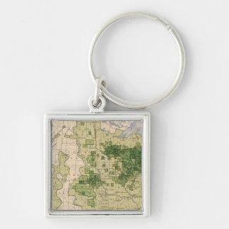 160 Rye/sq mile Key Ring