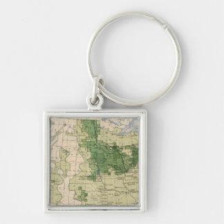 161 Barley/sq mile Key Ring