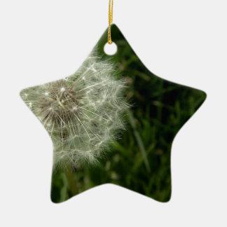 1620990_311687818987858_6625772091975342862_n.jpg christmas ornament