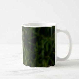 1620990_311687818987858_6625772091975342862_n.jpg coffee mug