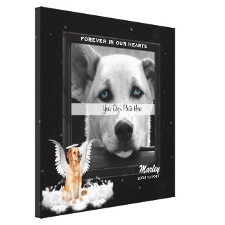 16x16-inch Pet Memorial Photo with Golden Dog Canvas Print