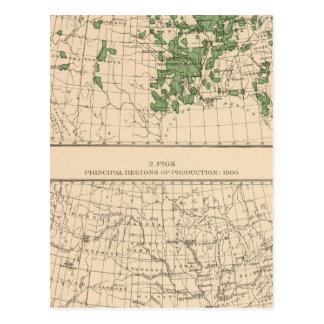 177 Plums, prunes, figs, principal regions Postcard