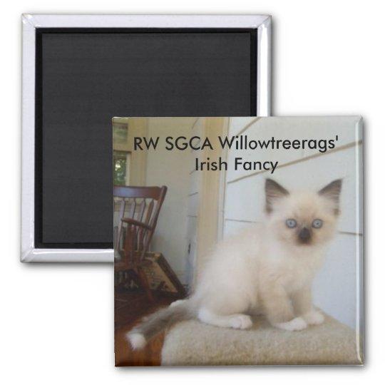 178, RW SGCA Willowtreerags' Irish Fancy Magnet