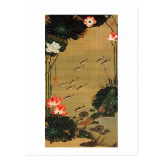17. 蓮池遊魚図, 若冲 Pond with The Lotus, Jakuchū Postcard
