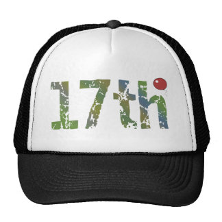 17th Birthday Hat Gift