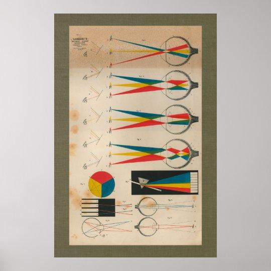 1851 Vintage Vision Eyesight Anatomy Chart Poster