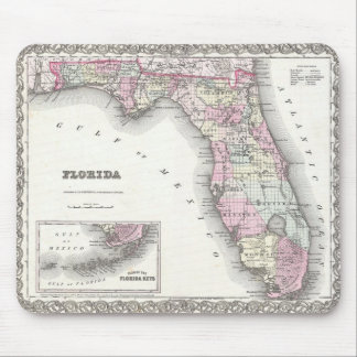 1855 Colton Map of Florida Mouse Mat