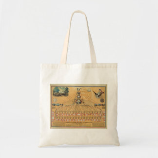 1862 Federal Government & American Union Diagram Budget Tote Bag