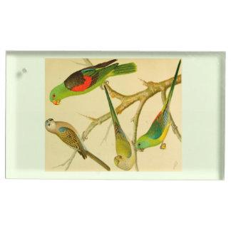 1878 naturalist image of Australian parakeets Table Card Holders