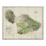 1885 De Witt Alexander Wall Map of Maui, Hawaii Poster
