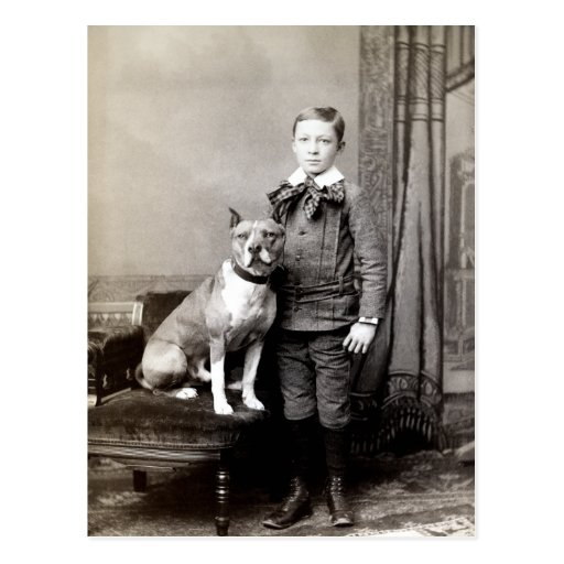 1890 Boy and his American Staffordshire Terrier Postcard