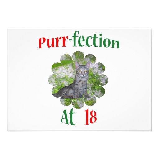 18  Purr-fection Invite