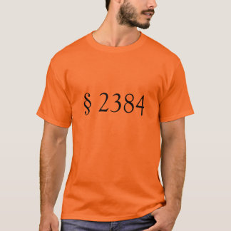 18 USC § 2384 - Seditious conspiracy T-Shirt