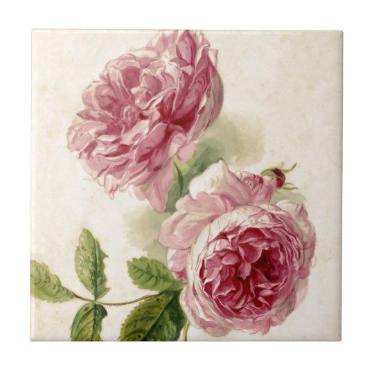 18th Century Pink Rose Study Tile