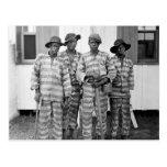 1900 Southern Chain Gang Postcard