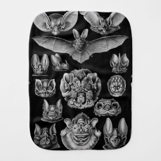 1904 Haeckel Chiroptera Burp Cloth