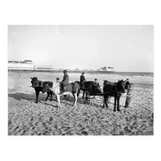 1906 Atlantic City New Jersey Ponie Rides Postcard