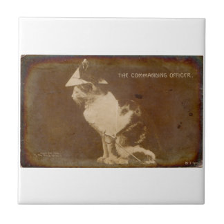 1906 The Commanding Officer dressed cat RPPC Small Square Tile