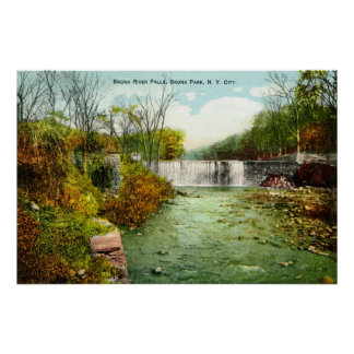 1908 Bronx River Falls, Bronx Park, New York City Poster