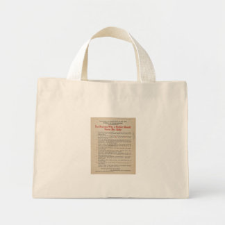 1914 NYC Breastfeeding Advocacy PSA Mini Tote Bag