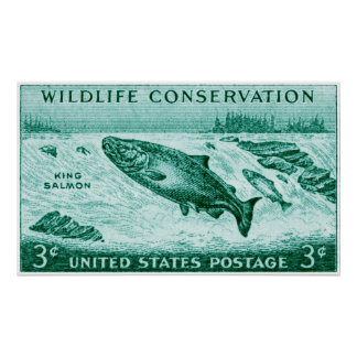1956 Wildlife Conservation Salmon Posters