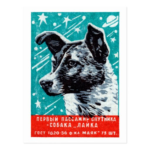 1957 Laika the Space Dog Postcard