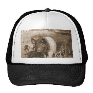 1960s Pig Cap