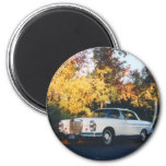 1965 Mercedes-Benz 220SEb coupe Refrigerator Magnets