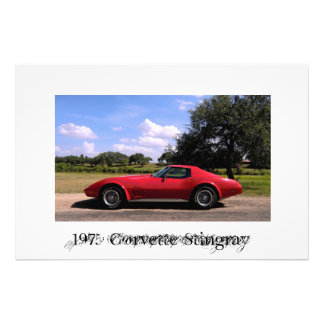 1975 Corvette Stingray Photo