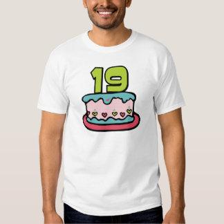 19 Year Old Birthday Cake Tee Shirt