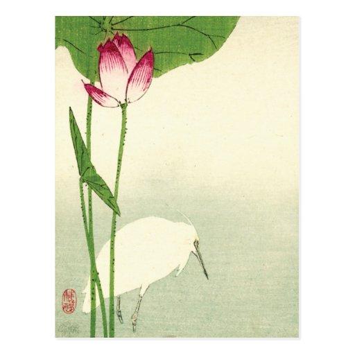 19th Century Japanese Bird Post Card