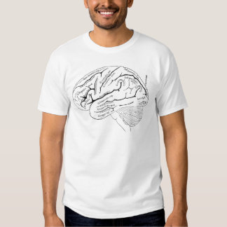 19th Century Map of the Brain - vintage art gift Tees