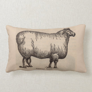 19th century print Cotswold sheep Lumbar Cushion