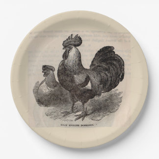 19th century print grey English dorkings chickens Paper Plate