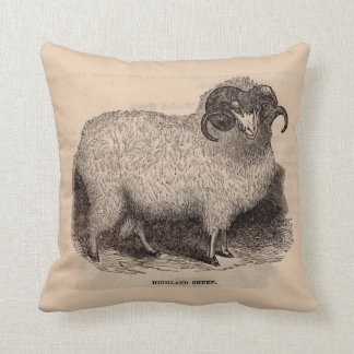 19th century print Highland sheep Cushion
