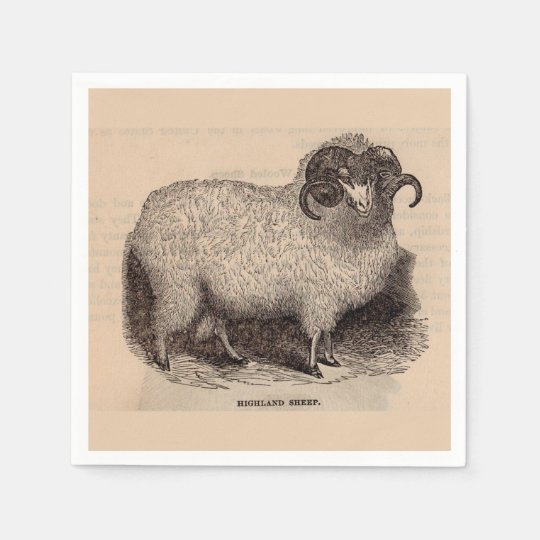 19th century print Highland sheep Disposable Serviette