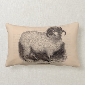 19th century print Highland sheep Lumbar Cushion