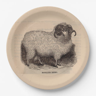19th century print Highland sheep Paper Plate