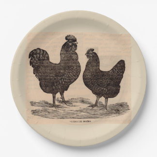19th century print Plymouth Rock hen and rooster Paper Plate