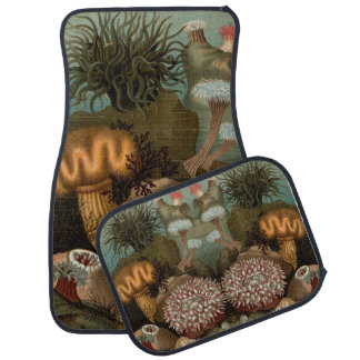 19th century print sea anemones car mat