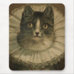 19th Century Vintage Grey and White Cat Print