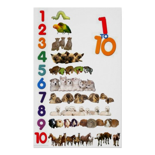 1 - 10 Numbers Poster