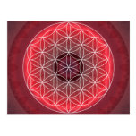 1 Chakra Flower of Life red Post Cards