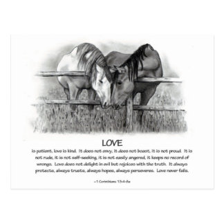 1 Corinthians 13: Love, Horses in Pencil Postcard